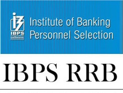 IBPS-RRB-admit-card-download