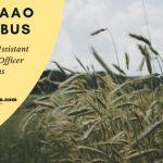 Download TNPSC AAO Syllabus PDF 2019 Online now