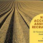 NFL Recruitment 2019 - Apply Online for 52 Accounts Assistant Vacancies in noida