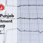 NHM Punjab Vacancy 2019